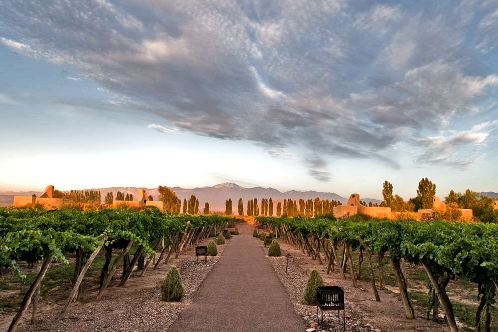 Vineyards-in-Mendoza-Argentina.-Photo-courtesy-Cavas-Wine-Lodge_hpgcph-1-
